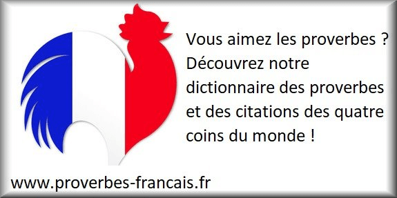 Citations Amitie 78 Citations Sur Amitie
